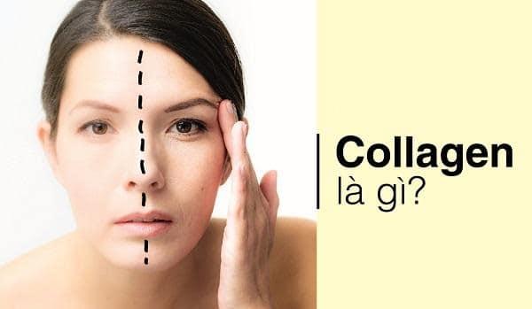 TOP 5 collagen tốt nhất hiện nay