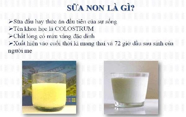 Có nên dùng sữa non ILDong không: Sữa non là gì?