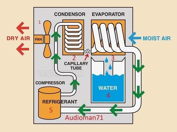TOP 5 máy hút ẩm tốt nhất hiện nay: Nguyên lý hoạt động của máy hút ẩm