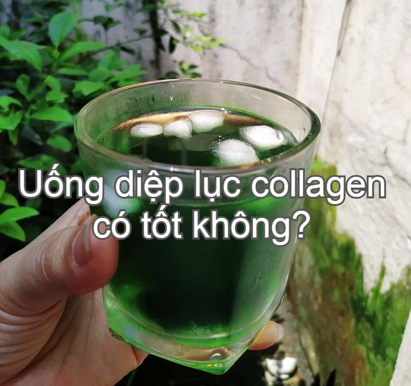 Diệp lục collagen là gì, có tác dụng gì, có tốt không? Review sử dụng diệp lục collagen
